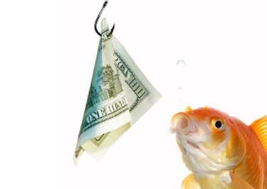 Het slappe koord tussen journalistiek en communicatie for Fish for cash