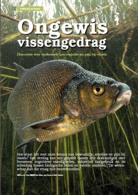 Cognitie en Pijn bij vissen brasem onder water