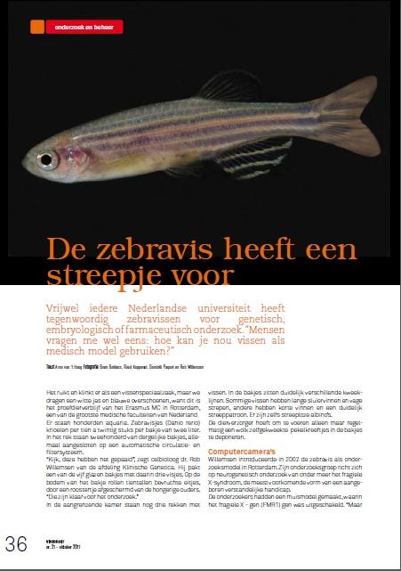 Zebravis Biomedisch onderzoek, genetica