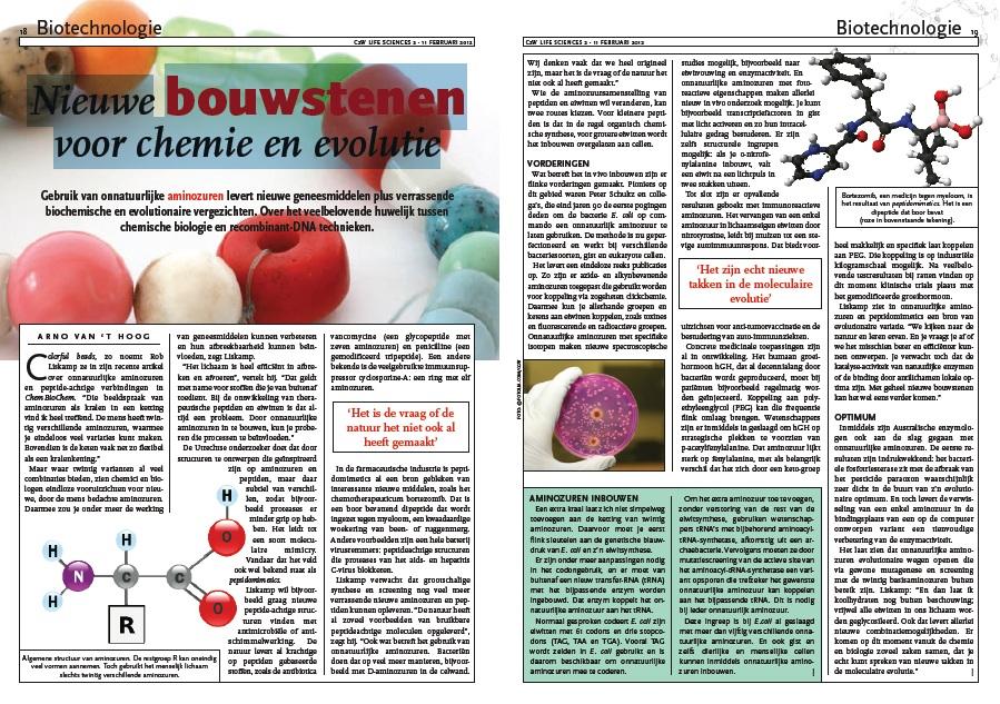 Nieuwe moleculen bouwen met onnatuurlijke aminozuren