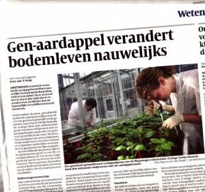 genetisch gemodificeerde aardappel verandert bodemleven nauwelijks