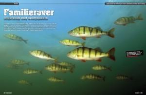 Baarsonderzoek-Roversmagazine-1024x667
