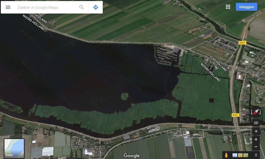 In het zuiden van de Westeinderplassen ligt 5000 vierkante meter rietzudden, schuilplaats van een genetisch unieke populatie meerval.