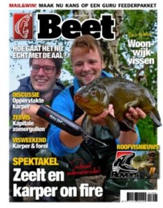 Cover Beet 8 2016
